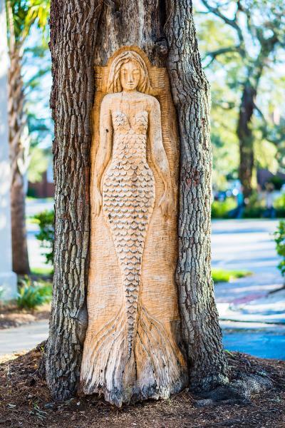 A mermaid tree carving is the most famous of the St. Simons Island Tree Spirits