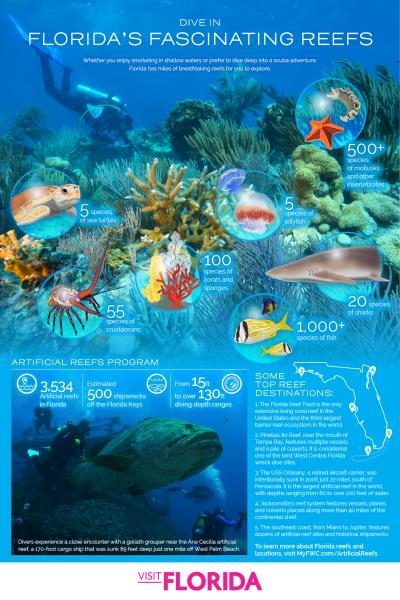 Florida's Fascinating Reefs