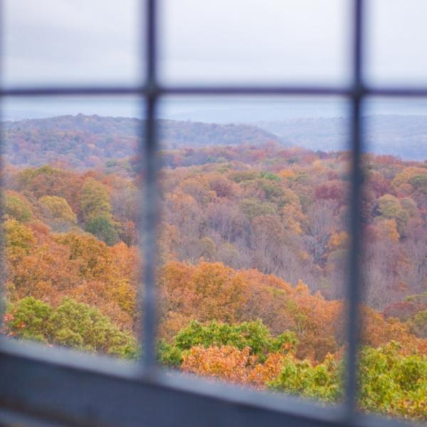 Hoosier National Forest in the fall from the view of a window