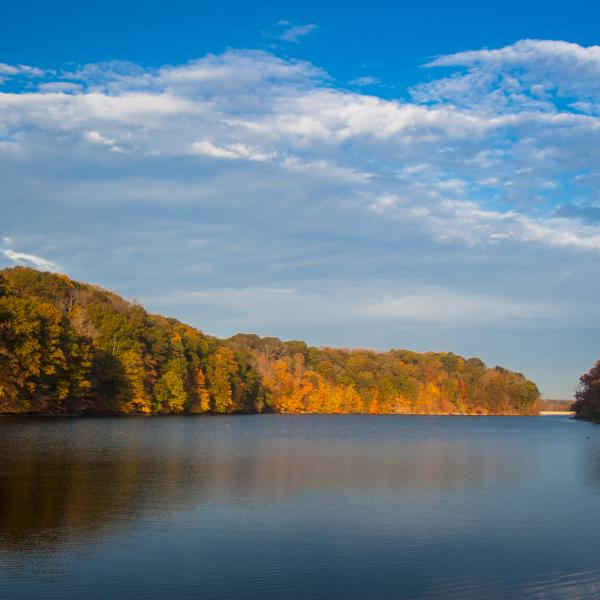 Griffy Lake during fall