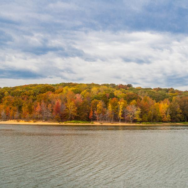 Fall at Lake Monroe