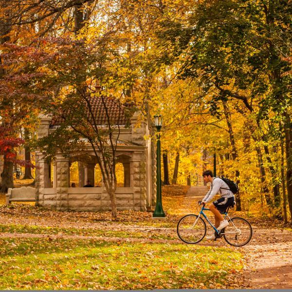 Fall IU Campus
