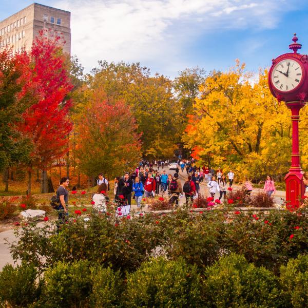 Indiana University 2