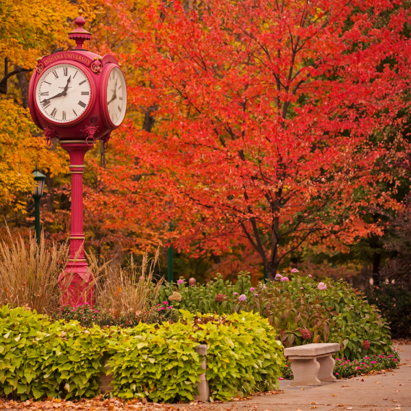 Campus in the fall with credit