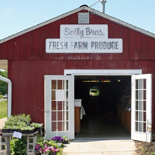 Solly Brothers Farm