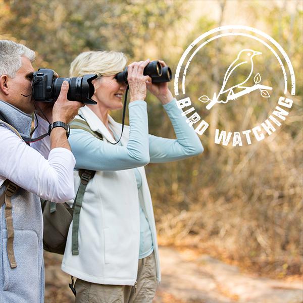 Birdwatching Adventure Trail Index Tile