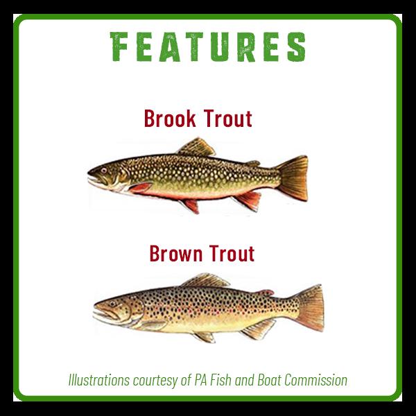 Clark's Creek Fishing Features Adventure Trail