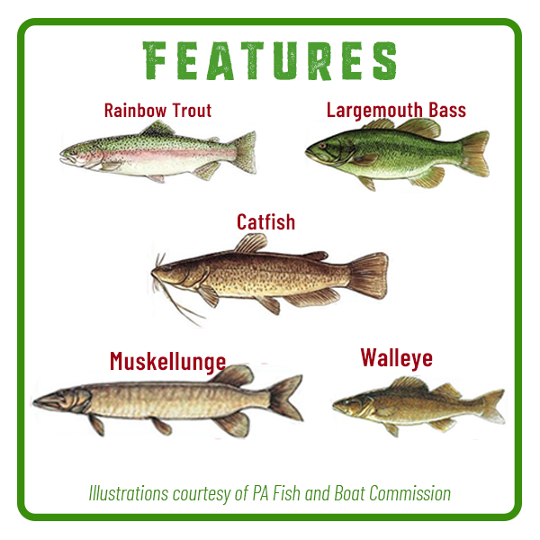 Little Buffalo State Park Fishing Features Adventure Trail