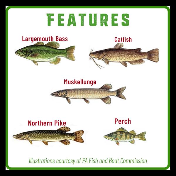 Memorial Lake Fishing Features Adventure Trail