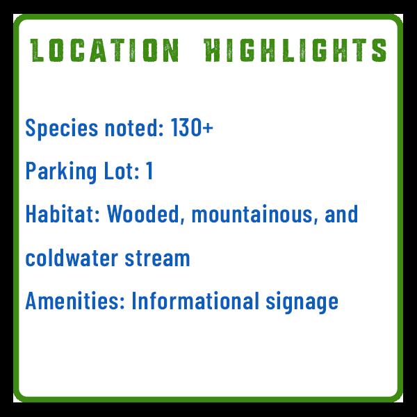 Stoney Creek Valley Bird Watching Features Graphic