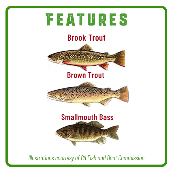 Stony Creek Fishing Features Adventure Trail