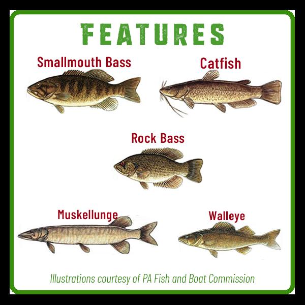 Susquehanna River Fishing Features Adventure Trail