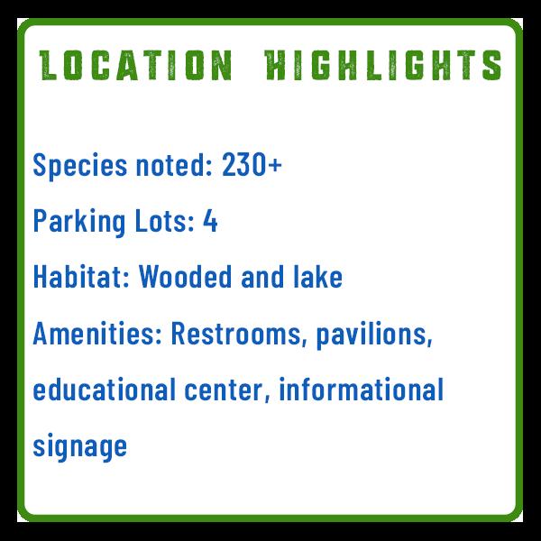 Wildwood Bird Watching Features Graphic