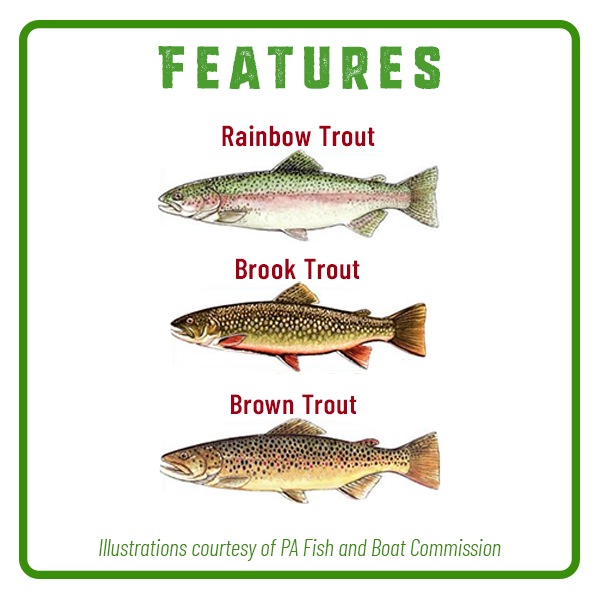 Yellow Breeches Fishing Features Adventure Trail