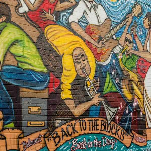 Back to the Blocks: Learning Pensacola's African-American history in Belmont-DeVilliers