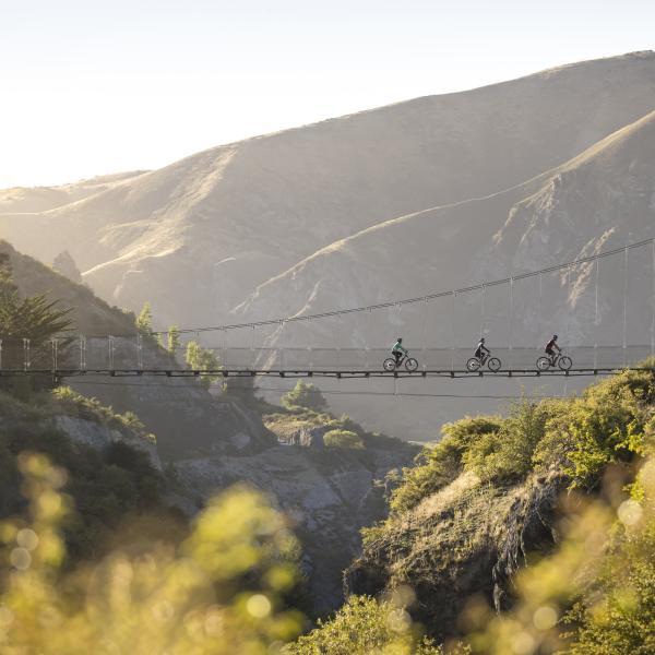 Biking Edgar Bridge, Gibbston Valley Trail