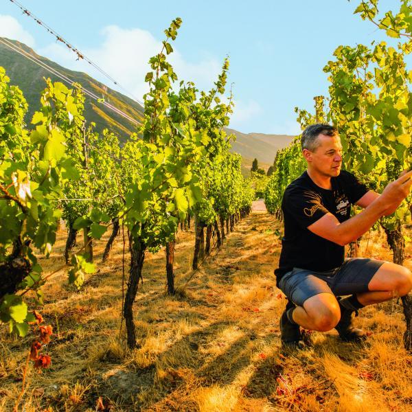 Christopher Keys, Gibbston Valley Winery