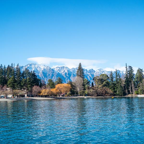 Queenstown lake side in Spring
