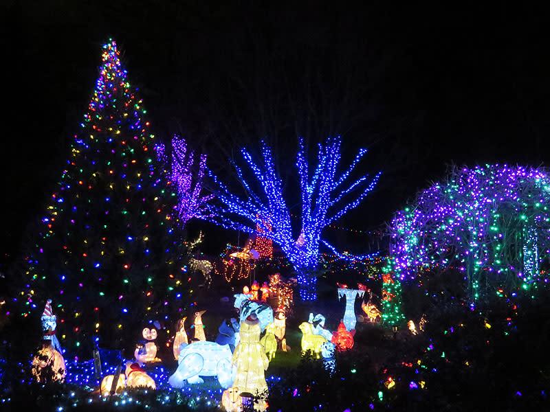 Lawyers Rd Christmas Lights