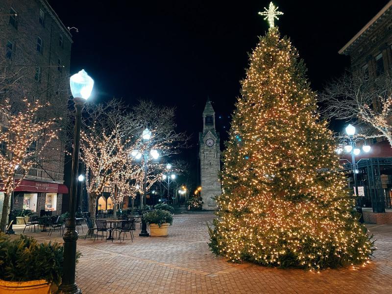 Corning NY - Christmas Tree in Centerway Square