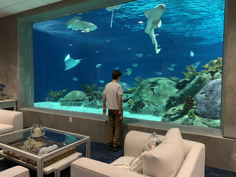 Boy standing in front of aquarium