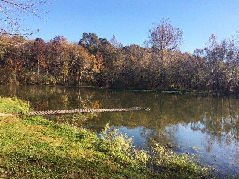 Ritter Springs Park