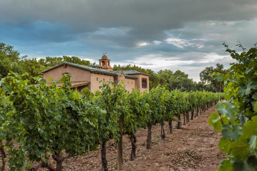 An outdoor image of Casa Rodena Winery.