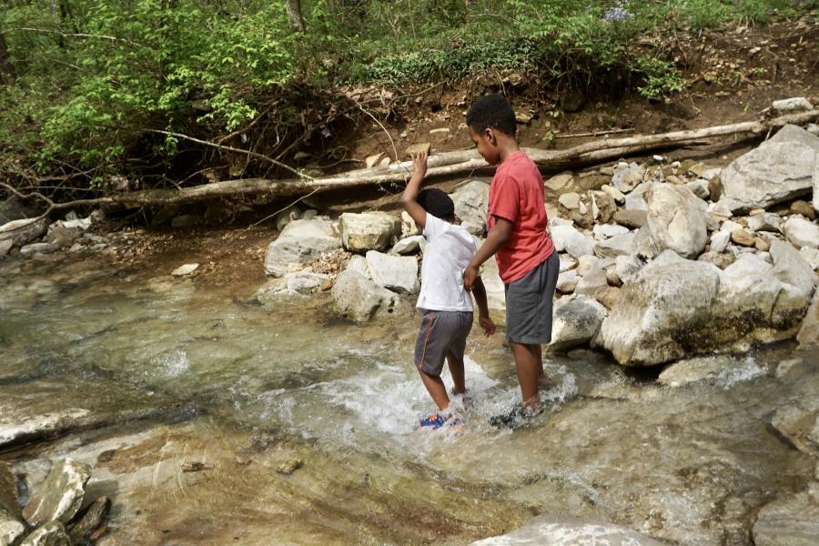 Huntsville Hikes Zenovia Wildflower Trail