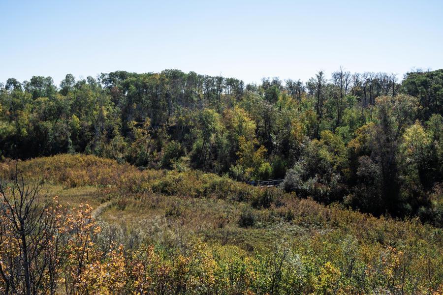 Beaver Creek in Saskatoon