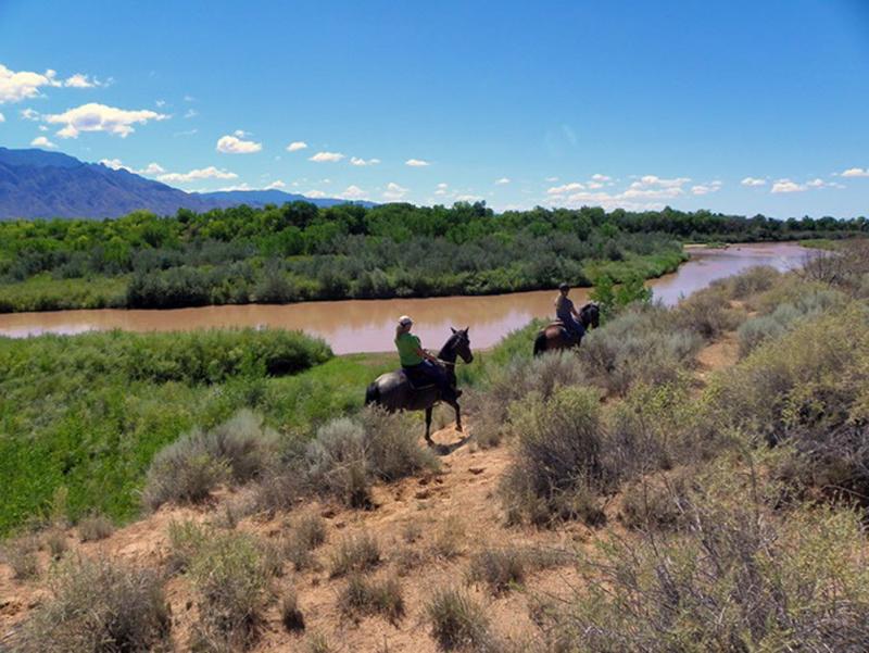 Horseback riding on Bosque