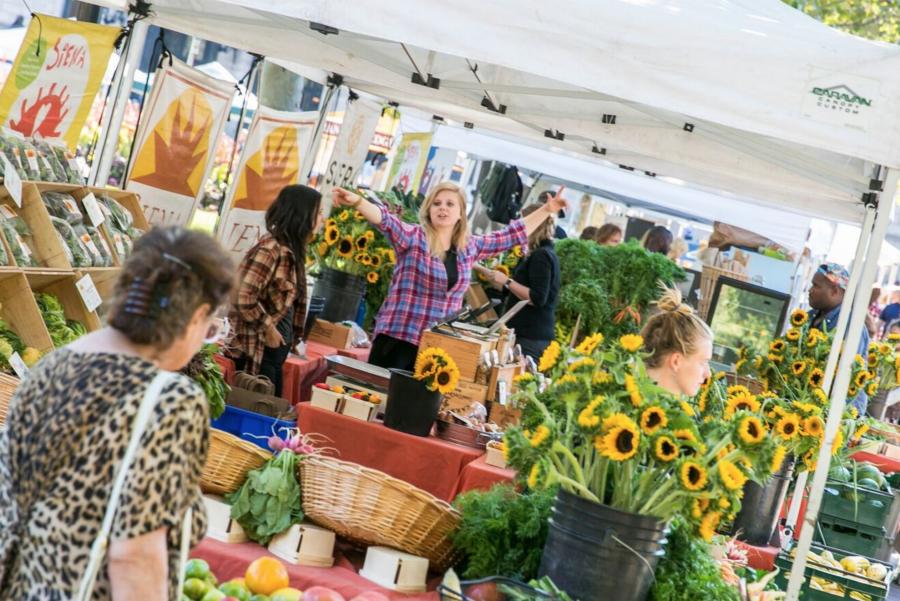 Copley Square Farmers Market In Boston, MA