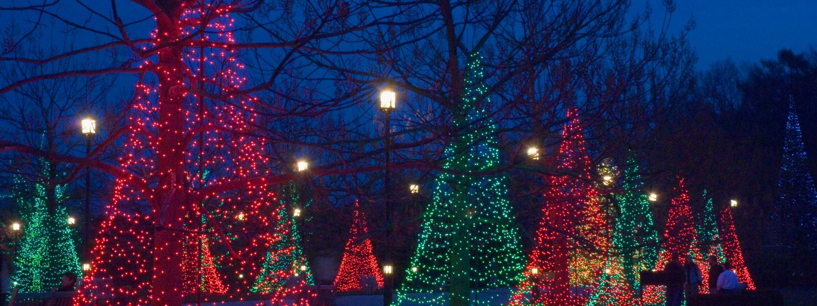 Longwood Gardens Christmas.Holiday Lights Events At Longwood Gardens Brandywine Valley