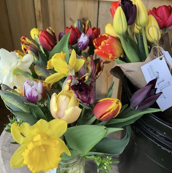 Tulip Bouquet from Sister Silo Flower Farm