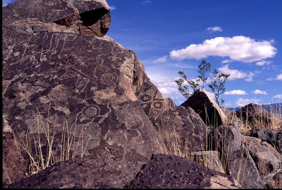 Petroglyph National Monument 4