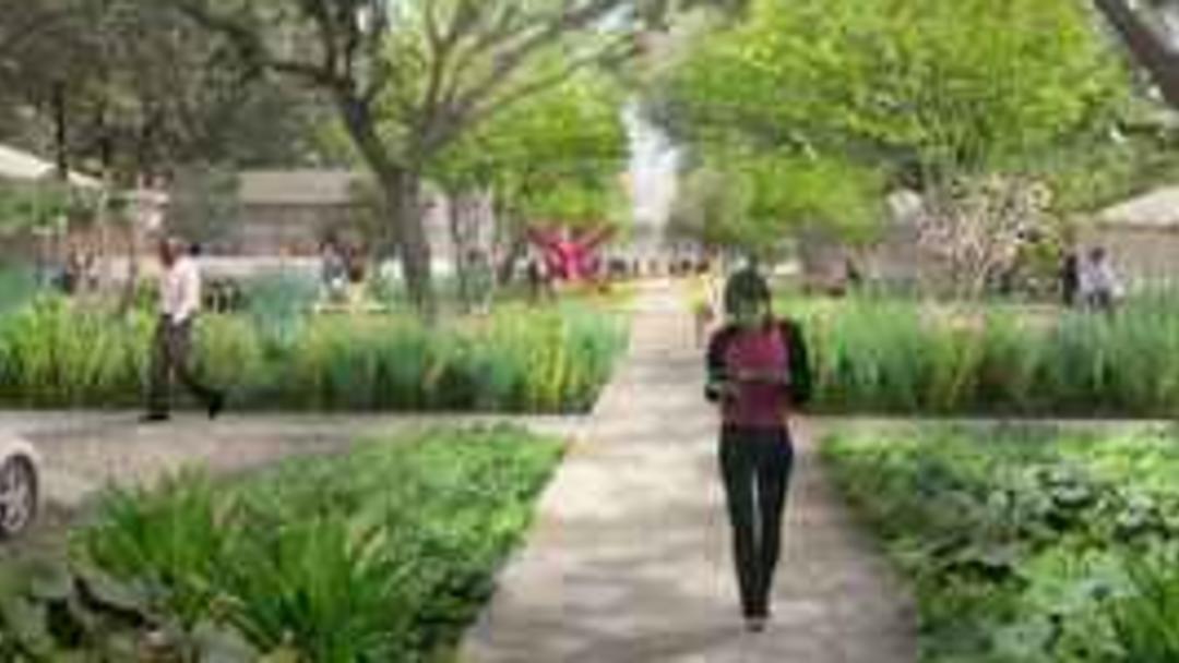 Menil Collection Campus Renderings