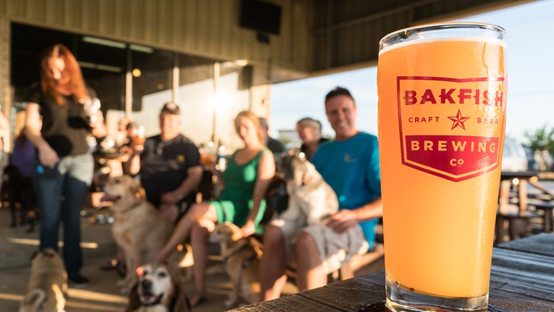 BAKFISH Brewing Company
