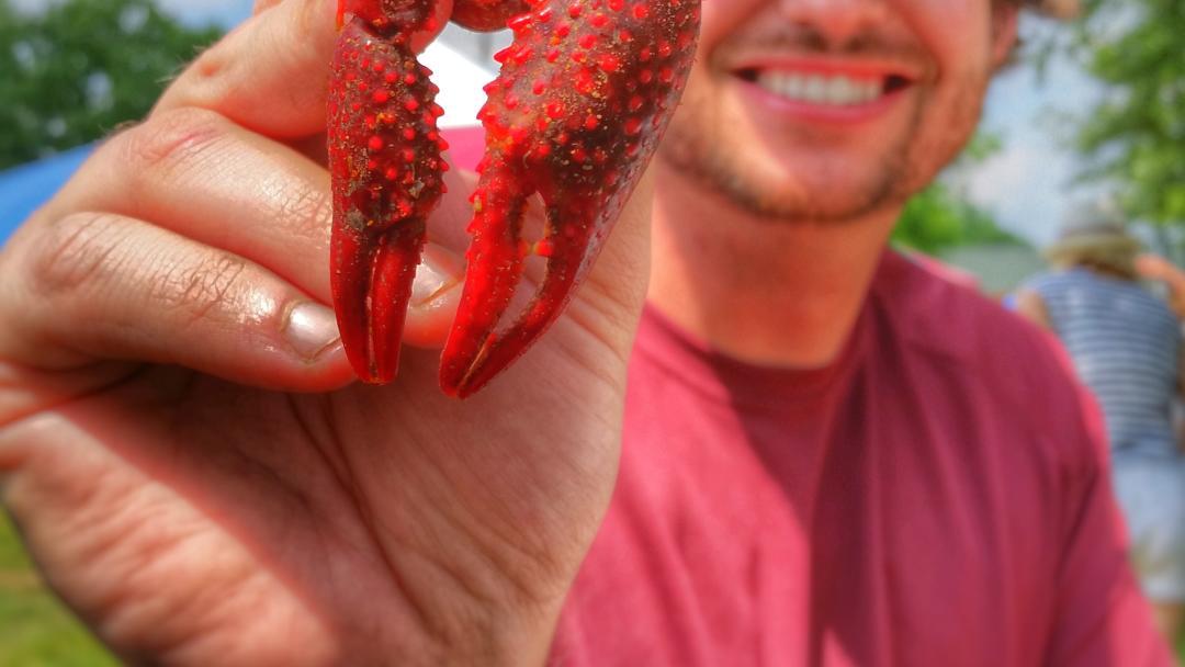 Crawfish in Tomball