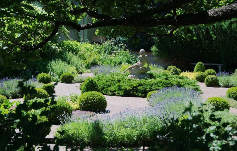 denver-botanic-gardens-lavendar-paths