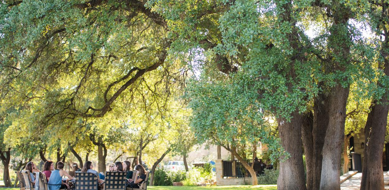 Photo of people sitting around a table in the yard at Spicewood Vineyards under tall green trees