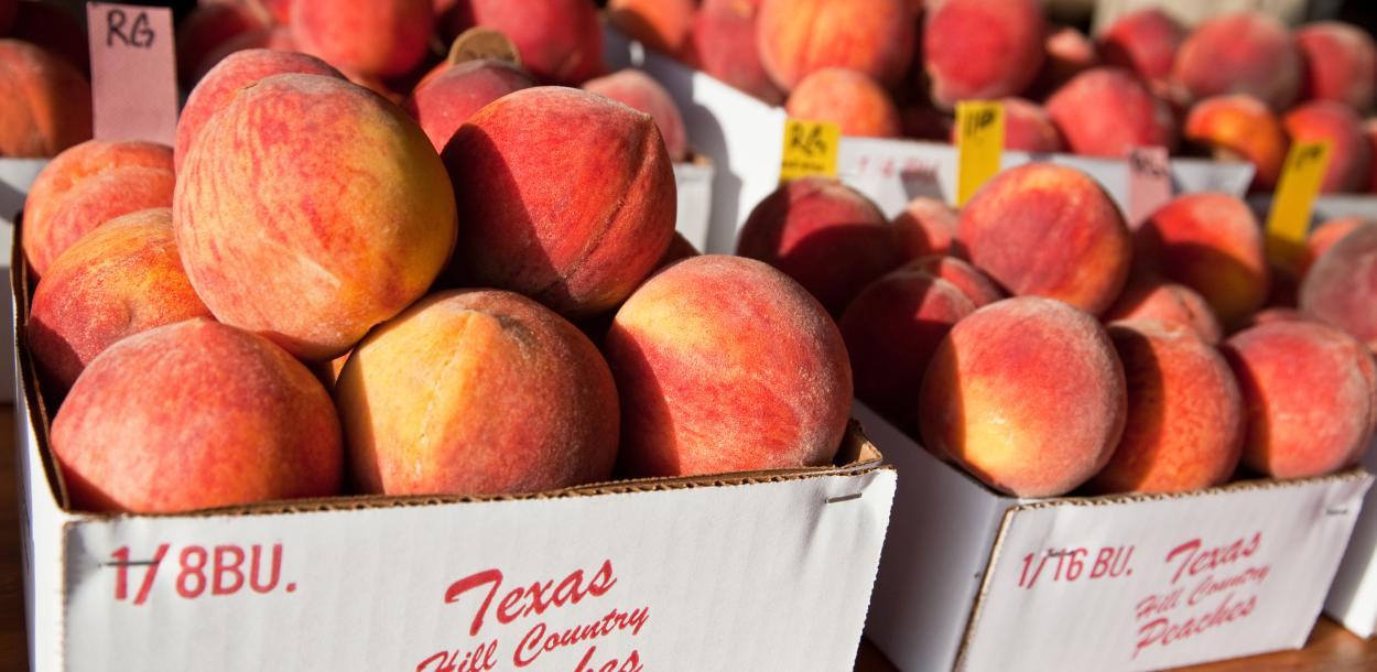 Fredericksburg peaches