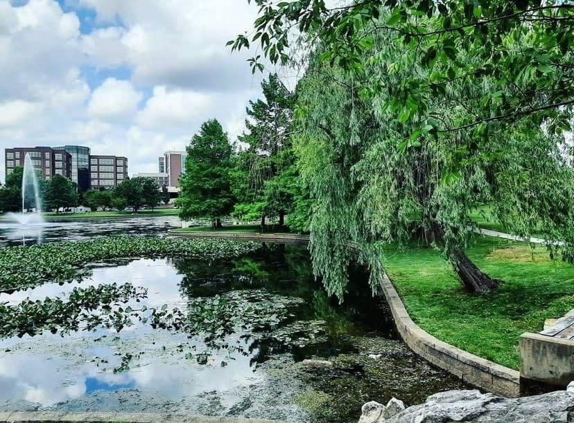 Bradford Park in Springfield, Missouri