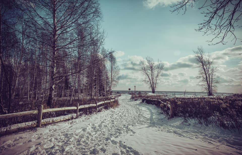 toronto-islands-in-winter-path-to-beach-photo-by-arienne-parzei