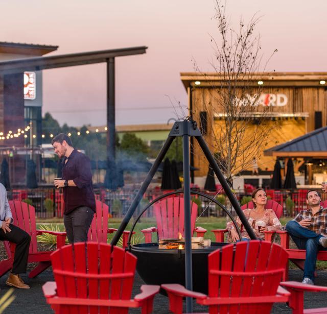 Brilliant Steins Vines And Moonshine Trail Unemploymentrelief Wooden Chair Designs For Living Room Unemploymentrelieforg