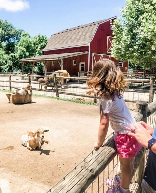 Deanna Rose Farmstead Opening Information