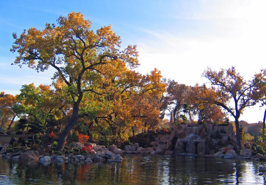BioPark Botanic Garden Fall Leaves