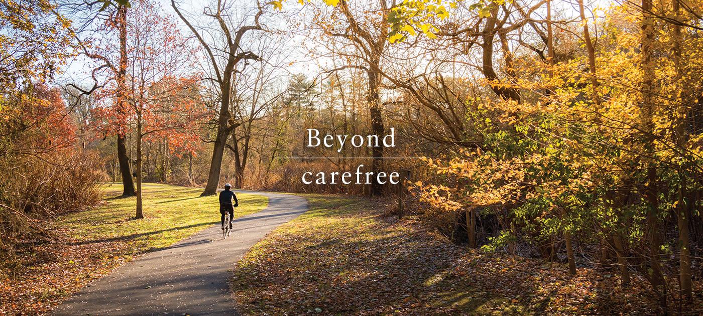 Beyond Carefree: Bronx River Parkway