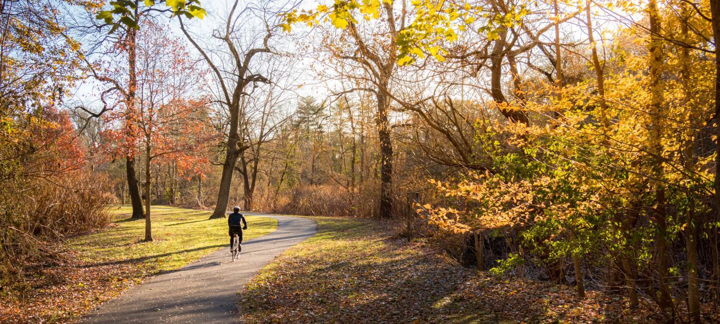 Bronx River Cyclist