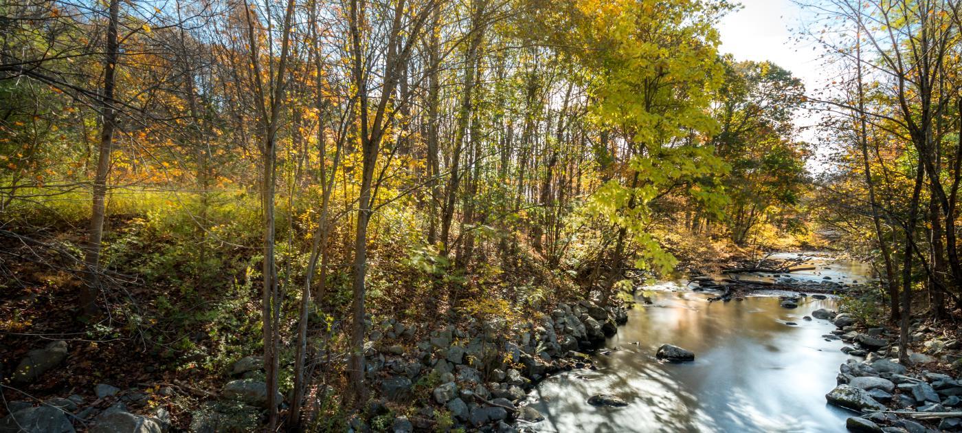 North Salem Stream