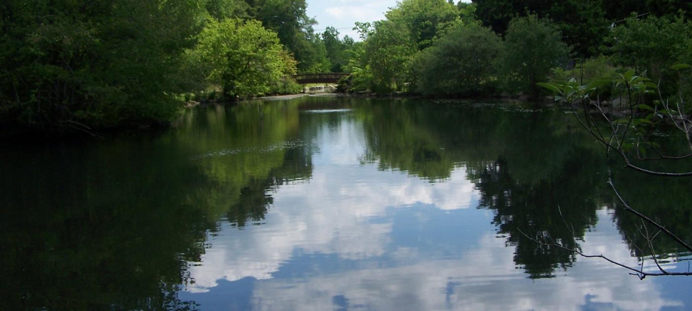 Wampus Pond