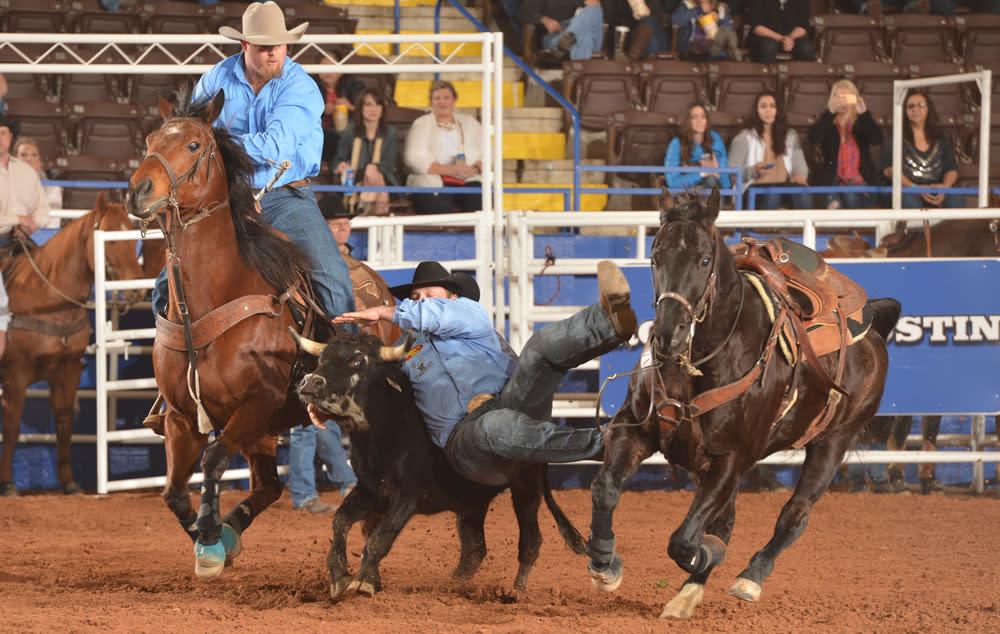 Steer Wrestling at Rodeo Austin